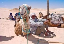 Тунис ожидает восстановления турпотока из Европы в 2017 году